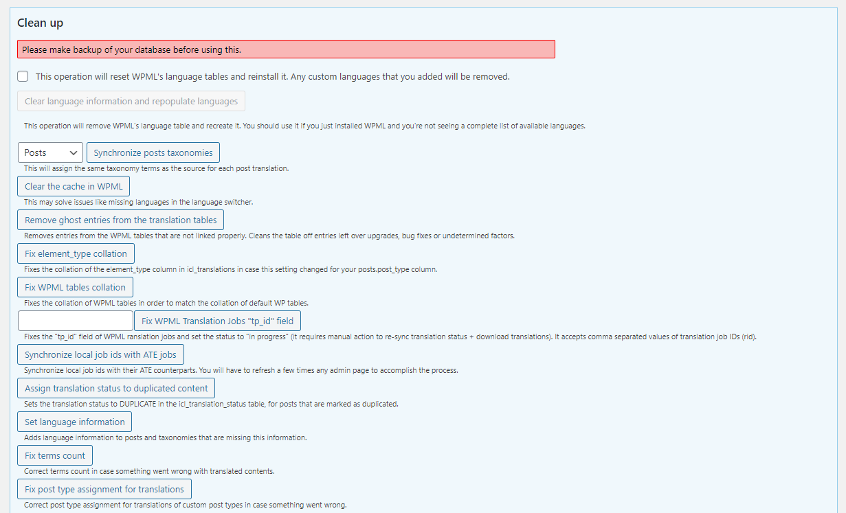 The WPML troubleshooting options page