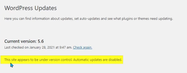 Wordpress Automatic Updates Disabled
