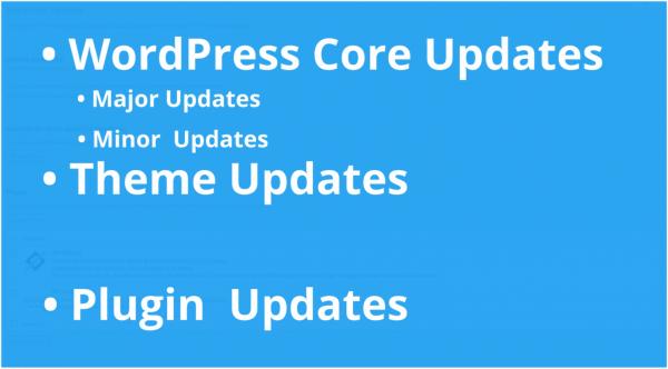 WordPress Updates: Core Updates, Theme Updates, Plugin Updates
