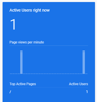 One Active Google Analytic Users