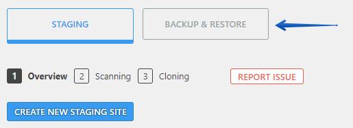 Backup & Restore Button