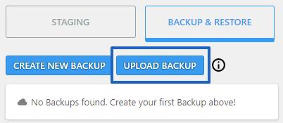Upload Backup Button